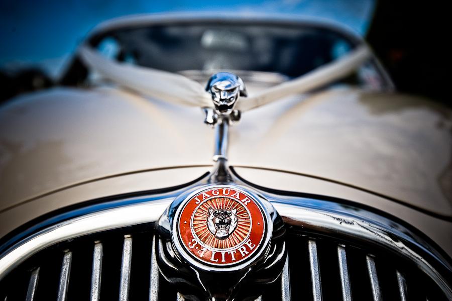 wedding car Jaguar