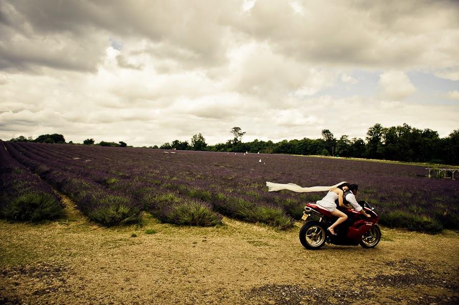 Prewedding photoshooting in lavender field