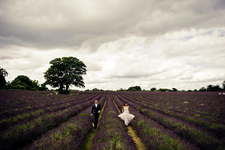 Lavender prewedding photographer