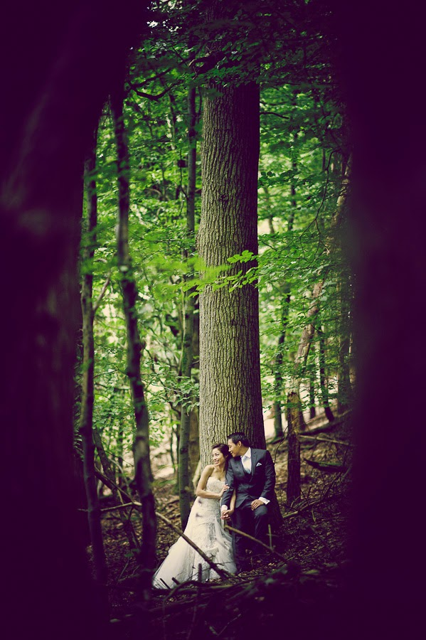 prewedding photoshoot in forest