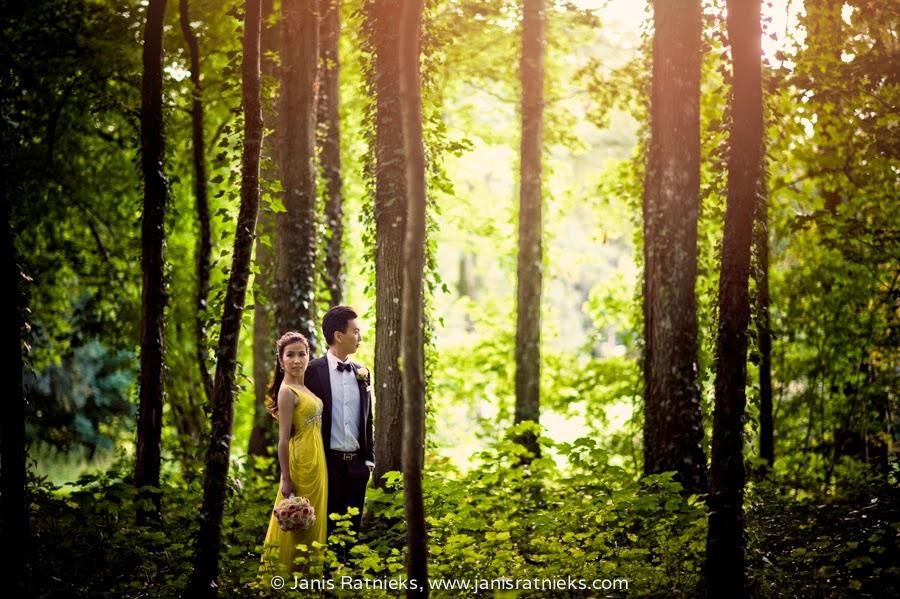 Chateau secret forest