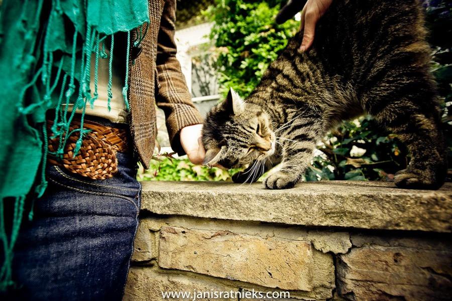 Cat Clapham